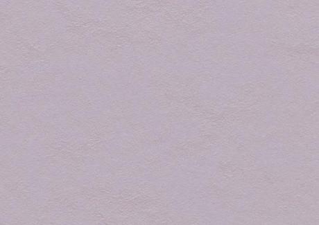 Lilac 3363
