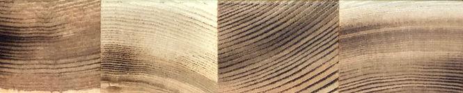 Baltix_Solid%20Hardwood_Plank%20Grain_Ex