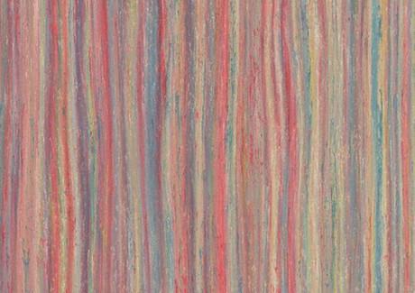 Colour Stream 5221