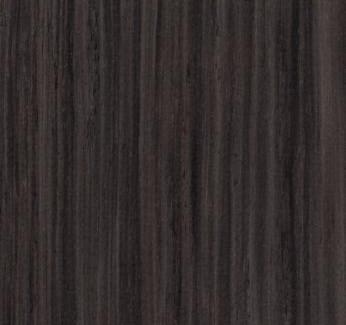 Petrified Wood 3577