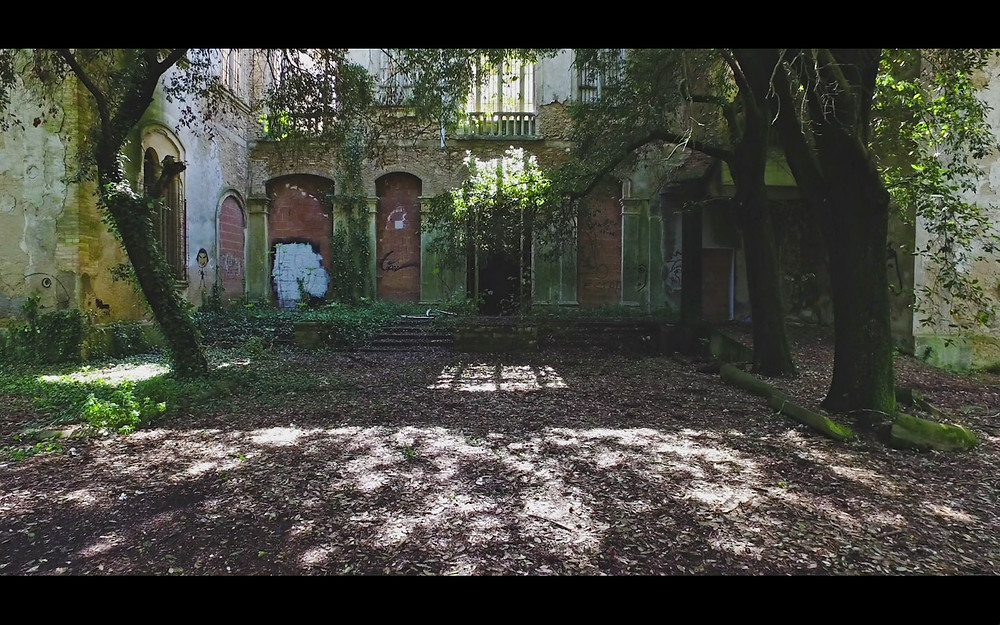 Zetaesse, Eleonora Raspi.  Laura Cionci presenta kalopsia, progetto girato a Volterra nell'ex ospedale psichiatrico. Tra le immagini che vediamo, a chi spetta decidere quali sono reali o irreali, di significato, o senza senso?