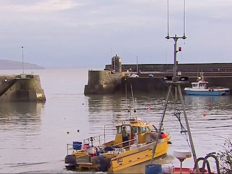 Blog: Brexit: The view from a fisherman and a farmer in Pembrokeshire – BBC News