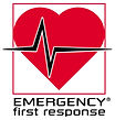 EFR, First Aid, CPR, AED