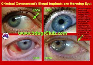 Card 2020 Criminal Government Illegal Im