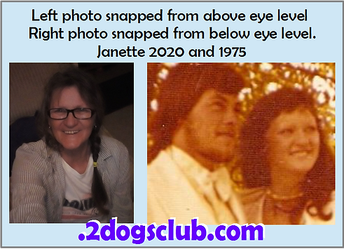 Card 1975-2020 Janette Above and Below.p