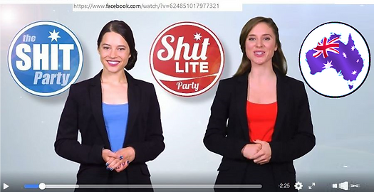 Politics - Shit Party v Shit Light Party
