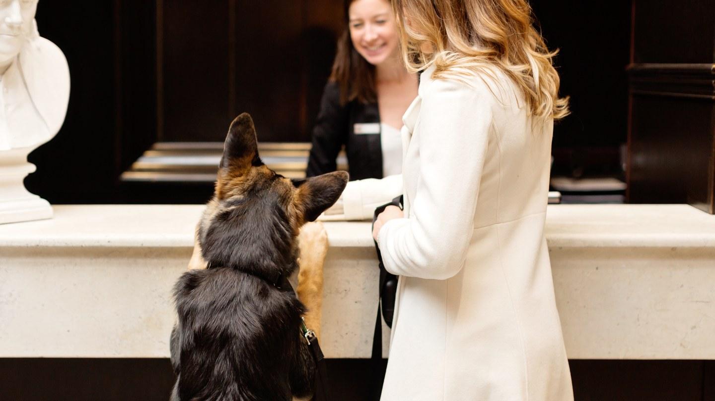 Best Pet-Friendly Hotels in USA