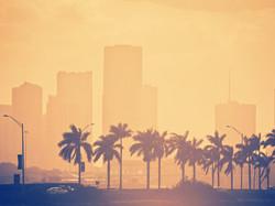 The Perfect Day in Miami