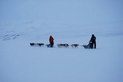 Want to Be...An Arctic Trailblazer?