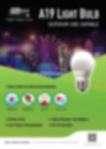 A19 light bulb(front).jpg