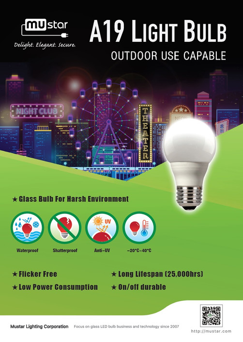A19 light bulb
