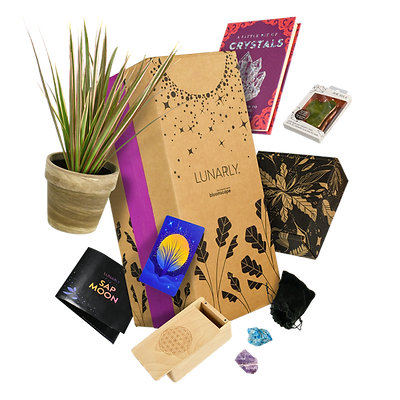 Lunarly subscription box with plants, ritual and self care products
