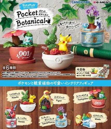 【Blinds/Re-ment】Pokemon Pocket Botanical (single box)