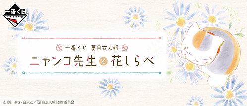 【Ichiban Kuji】Natsume Yujincho Nyanko-sensei and Flower Search
