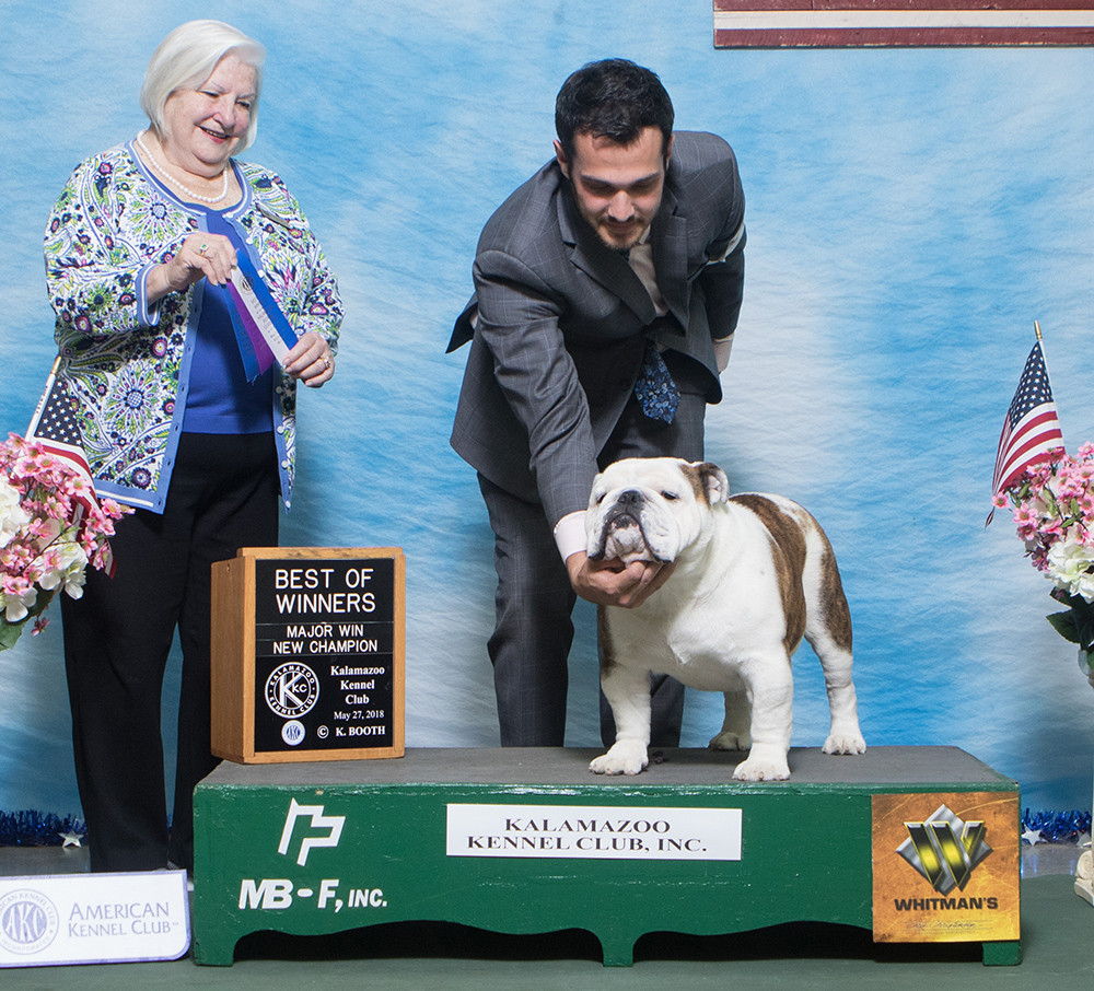 AKC Champion Exact Classic Ruger