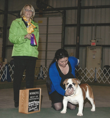 AKC Champion Slaterpryce and Exact Class