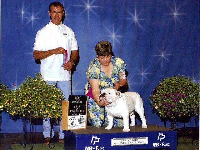AKC Champion Exact Classic Hoosier Daddy
