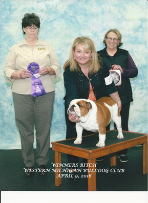 AKC Champion Exact Classic Guns and Rose