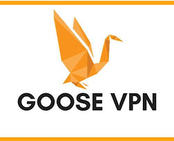 Goose VPN_logo22.jpg