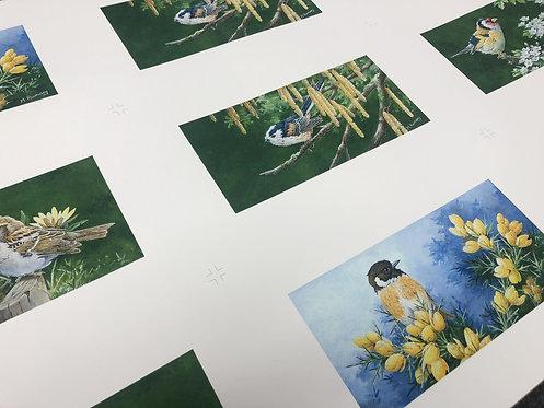 Giclee Printing