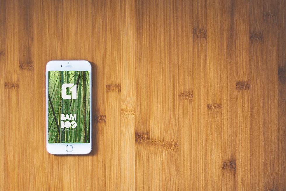 Bamboo on Iphone.jpg