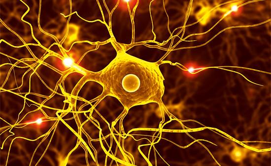 >>> Libère du stress, des tensions et blocages    >>> Réduit lestroubles liés au système nerveux    >>> Stimule la mémoire, fait resurgir les souvenirsenfouis    >>> Harmonise en douceur chaque cellule du corps