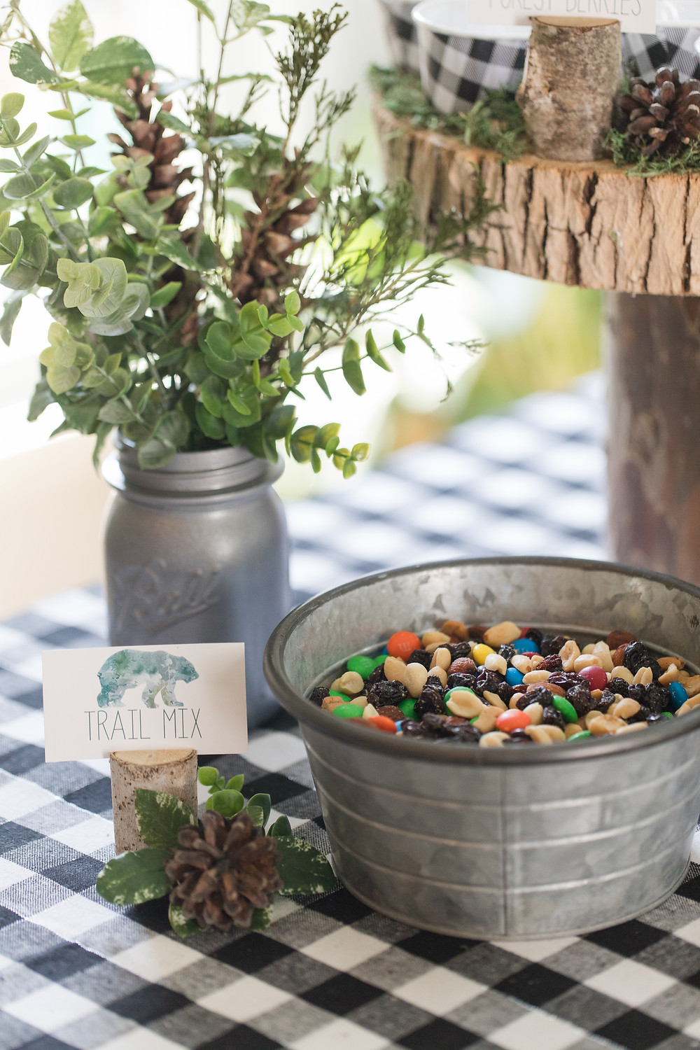 Trail Mix - One Wild Year - Boy's 1st Birthday Party - Ideas, inspiration, decor, party food and menu, kids activities and games, cake smash photo session, bear theme, wild one wilderness theme, decorations, cake, cookies, and more!