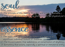 The meaning behind Soul Essence...
