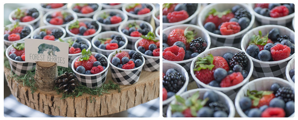 Forest Wild Berries - One Wild Year - Boy's 1st Birthday Party - Ideas, inspiration, decor, party food and menu, kids activities and games, cake smash photo session, bear theme, wild one wilderness theme, decorations, cake, cookies, and more!