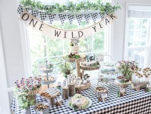 Wild One Adventure Party