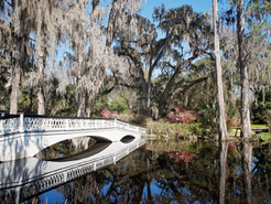 Charleston, SC: Eat, See, Do! {Extensive List}