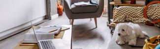 Rental property decorating tips