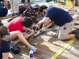 Bioluminescence Cruise: Science at Sea!: Blog 2