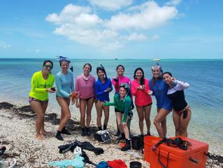 BSC4205: Student Blogs - Ally Mayhew