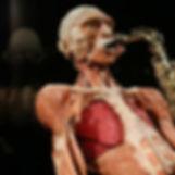 Bodyworlds1.jpg