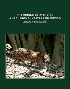 2018_Protocolo captura jaguar PORTADA.jp