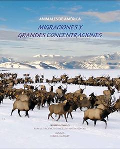 2012 - Migraciones y Grandes Concentraci