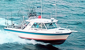 The Trophy Cup - Frankfort MI Charter Boat