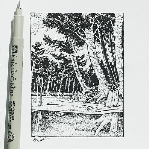 """Little Bend"" - Pen & Ink Drawing, framed to 4""x6"""