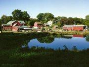 belinsky farm.jpg