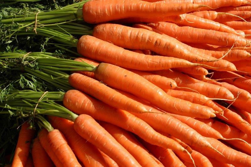 carrots-20060407-06.jpg