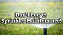 Maintenance Program