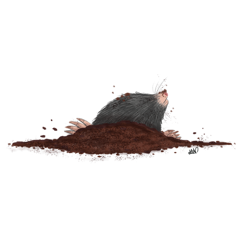 Mole.png