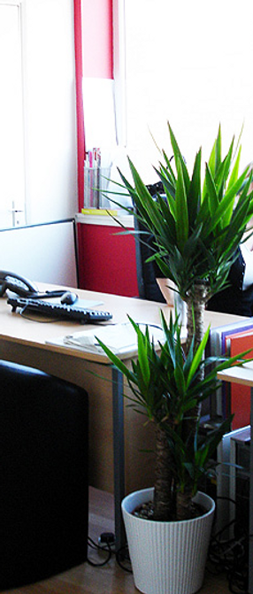 Office space in Slough, Slough Office to Rent, Slough Office Space