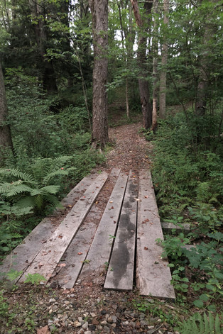 DURHAM'S TRAIL AND PATHWAY SYSTEM: AMENITY EXTRAORDINAIRE!
