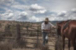 Australian stockman with horse.jpg
