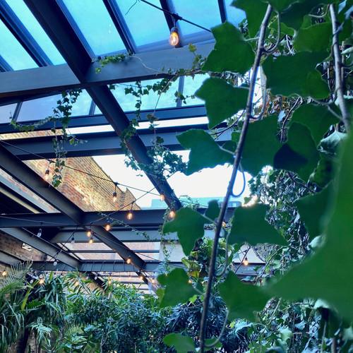 Celeste Garden 2020 - Retractable Roof 3