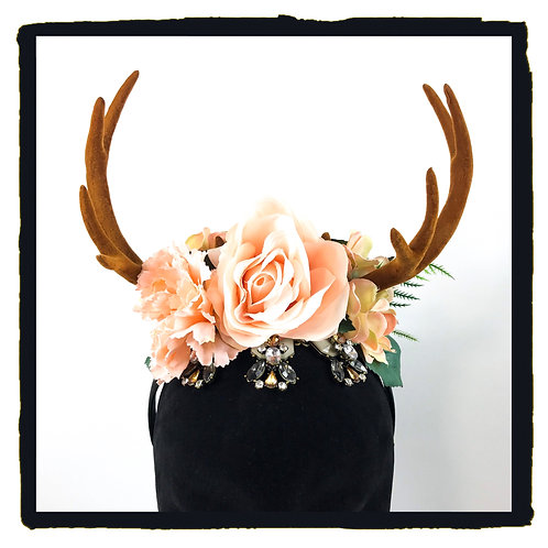 Soft peach rose stag horns