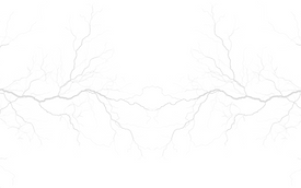 Adsız tasarım (8).png