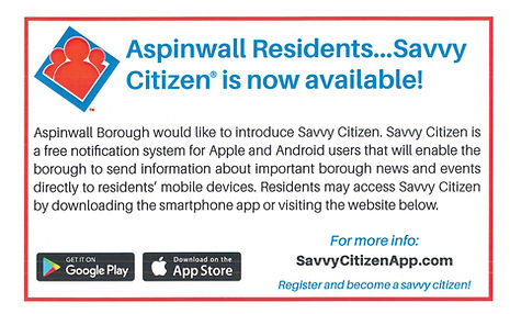 Savvy Citizen.jpg